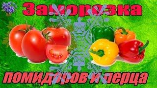 Помидоры и перец домашняя заморозка  на зиму(В видео покажу как заморозить овощи на зиму. На сегодня замороженные овощи и фрукты здоровая продукция...., 2014-08-19T16:50:50.000Z)