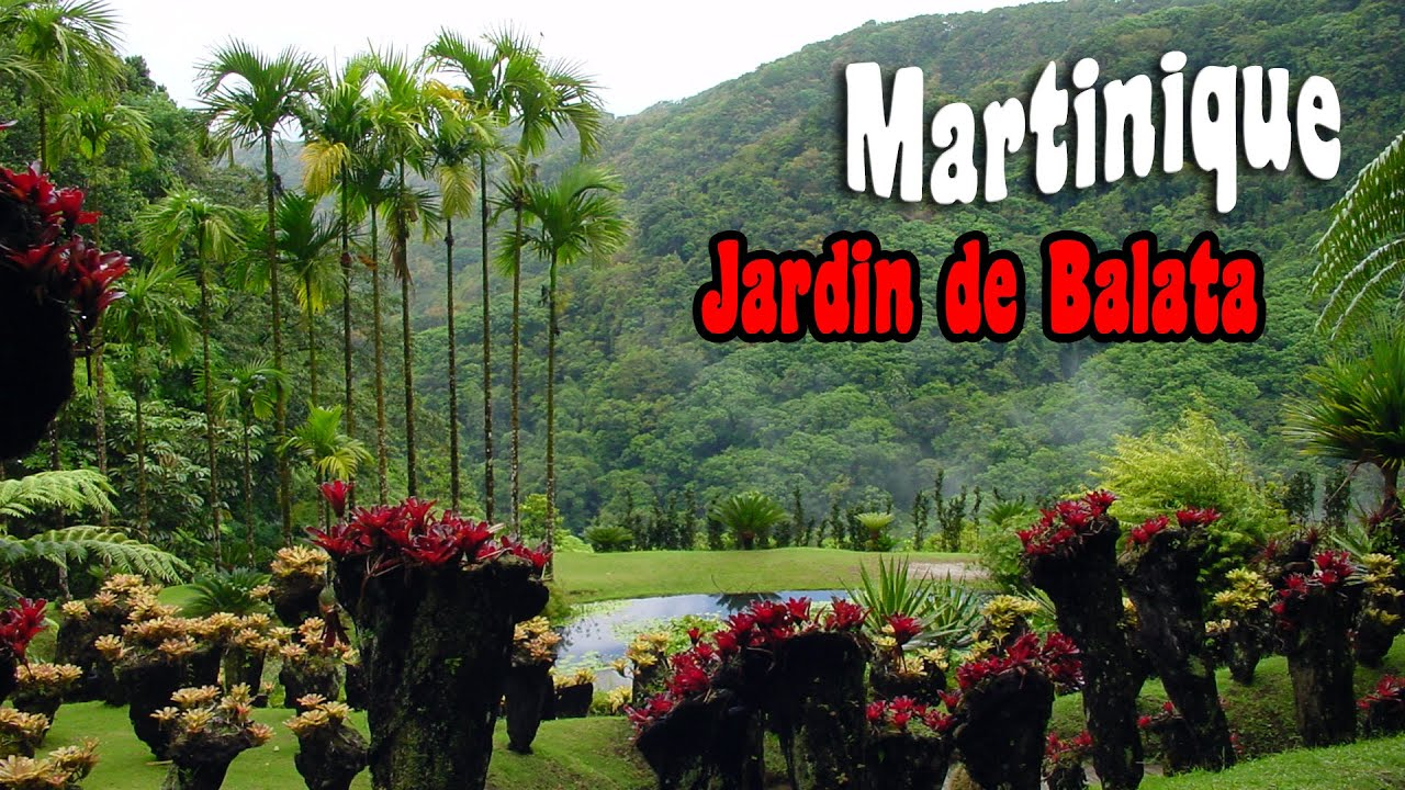 Martinique le jardin de balata youtube for Jardin balata