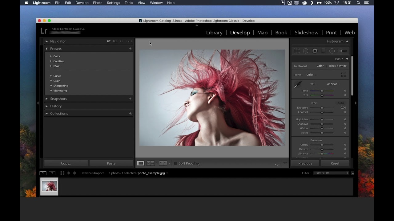 How to import xmp presets in Lightroom Classic