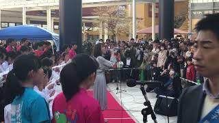 半崎美子 世界が待ち望んだ歌姫(前編) 半崎美子 検索動画 19