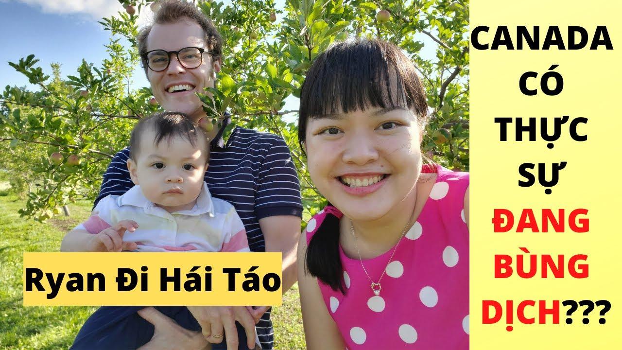 🇨🇦[382] ĐI HÁI TÁO Ở CÔNG VIÊN ĐỐI DIỆN NHÀ | Canada Có Thực Sự Đang Bùng dịch |Gia Đình Việt Canada