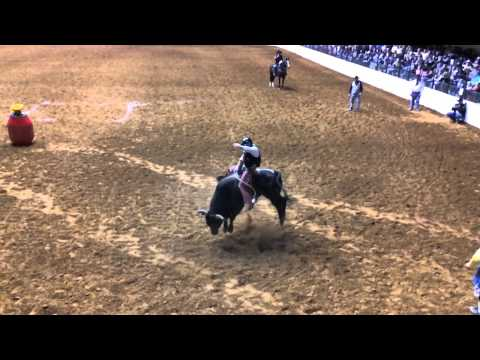 Bulls Night Out At The Fort Worth Stock Show And Rodeo