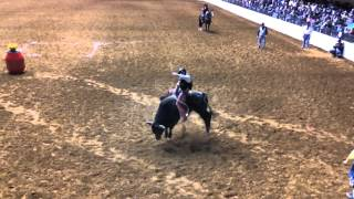 Video Bulls Night Out at the Fort Worth Stock Show and Rodeo download MP3, 3GP, MP4, WEBM, AVI, FLV November 2017