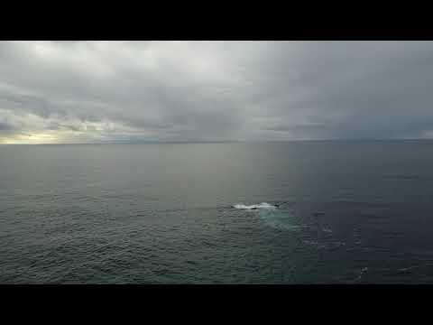 Newport Beach Coastal DJI footage