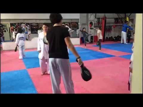 Tekvando Taekwondo Tae-Kwon-Do