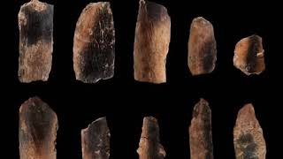 Researchers have uncovered evidence of the storage  consumption of animal bone marrow at Qesem Cave