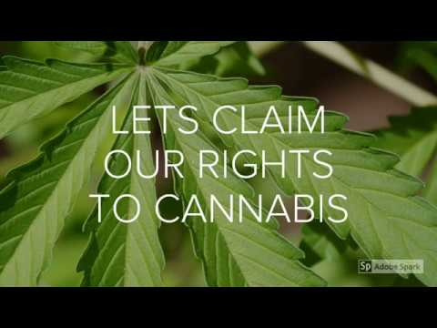 Cannabis Claim Of Rights