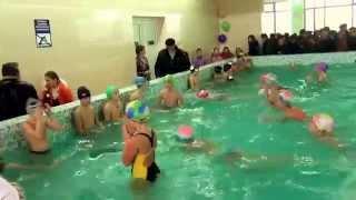 Васильковский бассейн, школа 9, Военный городок, Васильков, уроки с плавания