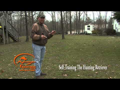 vid-9-learning-sit-whistle-&-casting-to-the-stand