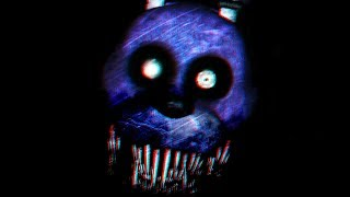 BONNIE KNOWS WHERE I LIVE.. HE HACKED MY COMPUTER! | FNAF Withered.EXE