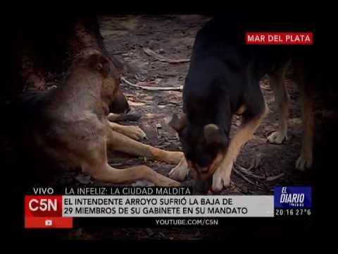 C5N - Informe: Mar del Plata, la infeliz (primera parte)