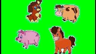 Звуки животных для малышей. Видео для самых маленьких