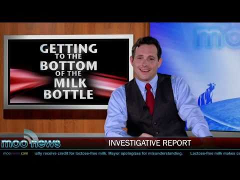 Moo : Investigative Report