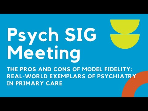 The Pros and Cons of Model Fidelity: Real-World Exemplars of Psychiatry in Primary Care