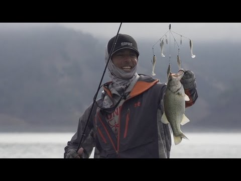 Bass Fishing Trifecta!!! Fishing in California for LM, SM, and Spotted Bass! (Going Ike S2 - Teaser)