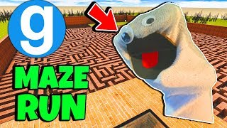 Brand New Baldi's Basics in Education and Learning Arts and Crafters Maze Run #7 (Gmod)Garry's Mod