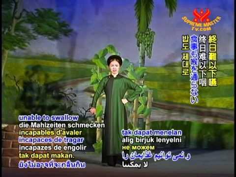 Aulacese (Vietnamese) Chèo Traditional Opera: Tấm Cám (2/3)