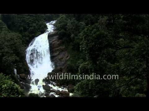 Attukal waterfall on way to Munnar, Kerala