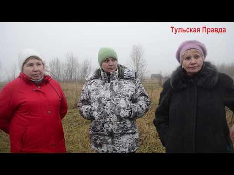 Алексинский район, дер. Большое Шелепино, мертвых животных просто закапывают в траншее, 18-11-19г.