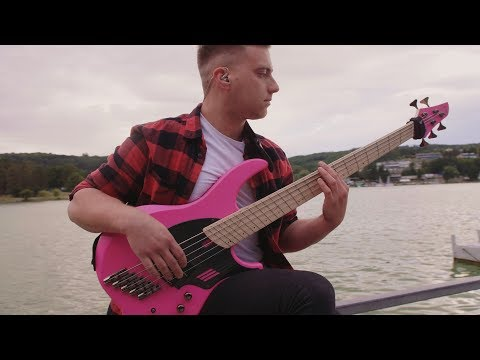 Modern Day Babylon - Coma ||| bass playthrough |||
