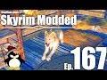 Introducing Meeko Reborn! - Skyrim Modded Ep 167