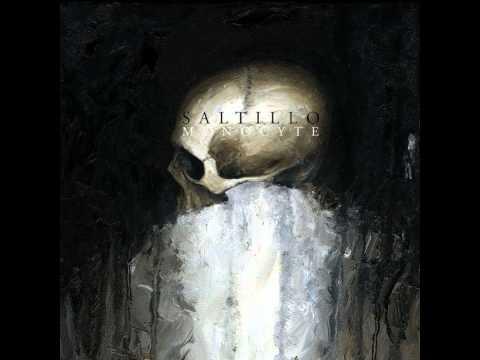 Saltillo - The Locus Priory