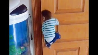 Mother has to leave for a few days, and the little monkey waits for her at the door every day