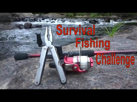 Survival Fishing Challenge!! — No Lures/Bait (Remote Northern Forest)