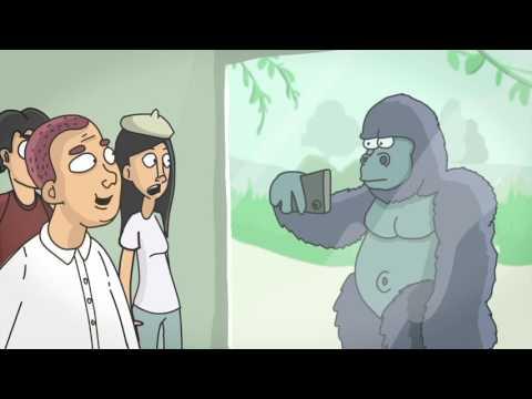 смотреть лучшее смешное видео