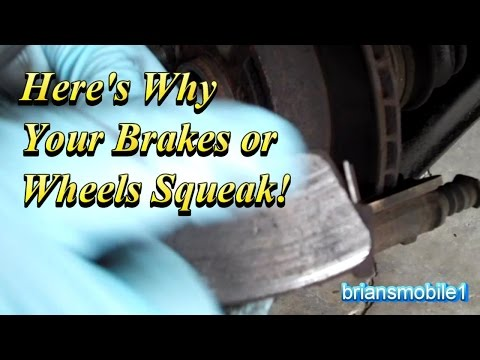Why Your Brakes or Wheels Squeak