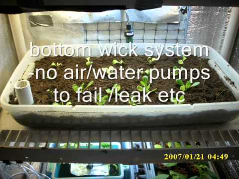 Indoor Bottom Wick System Garden Aka Self Watering Hydroponics