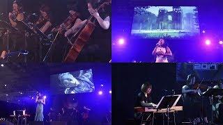More Info: http://nier2.com/blog/2016/11/10/nier-music-concert-at-t...
