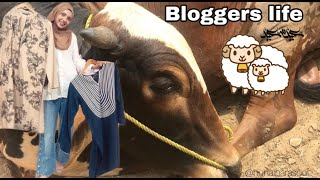 Bloggers life before EID || VLOG 2020