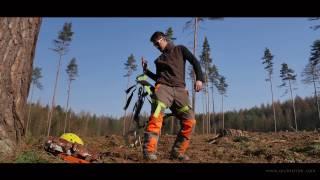 EXPO - V lese