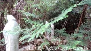 山中に存在する複数のマリア観音像 元は付近に仏教施設があったという。...