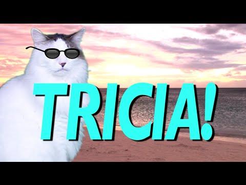 HAPPY BIRTHDAY TRICIA EPIC CAT Happy Birthday Song YouTube