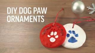 Earth Rated DIY Dog Paw Print Christmas Ornament