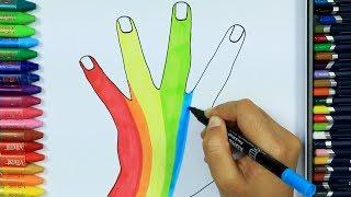 Come disegnare a mano 🖐| Colori per bambini | Come colorare | Disegnare e colorare