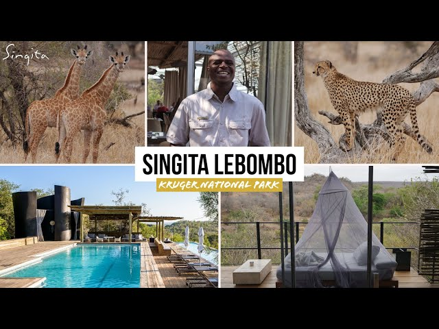 Singita Lebombo Lodge HIGHLIGHTS Kruger National Park South Africa