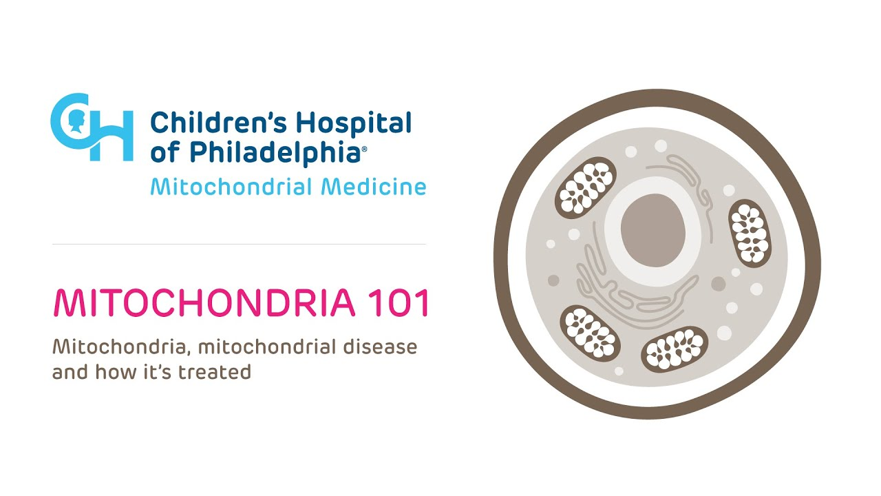 Children's Hospital of Philadelphia releases new information on Mitochondrial Disease.