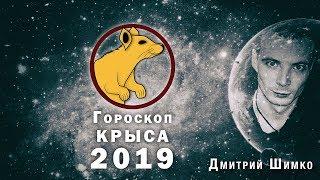 Гороскоп Крыса -2019. Астротиполог, Нумеролог - Дмитрий Шимко