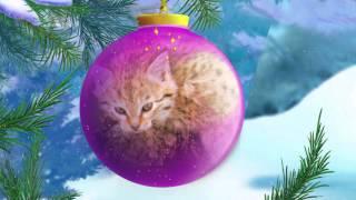 Уроки живої природи - Кішка (2 серія) (Уроки з тітонькою Совою)