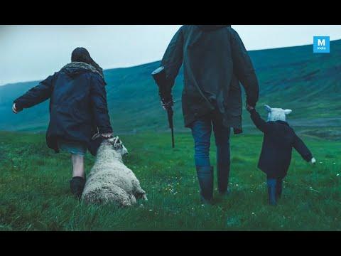 Lamb - Trailer subtitulado en español