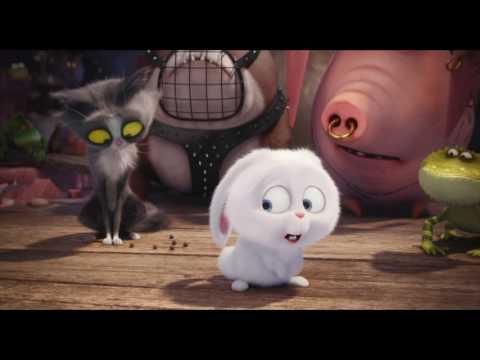 Comme Des Bêtes / Featurette Doublage VF [Au cinéma le 27 juillet] streaming vf
