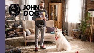 """Sztuczka """"przynieś"""" – TRENING – John Dog"""