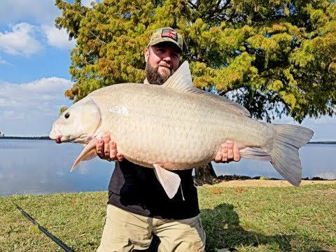 Buffalo Carp Fishing In Lake Decker, Austin, Texas, USA
