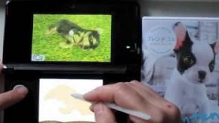3ds Nintendogs + Cats (yorkshire Terrier)