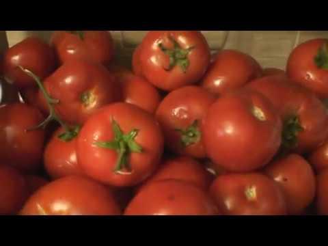 مطبخ مملكه - صلصة طماطم وصلصة المحشى فى ثلاجتك طول العام