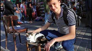 Стамбул, Турция (ASMR, Коты, Достопримечательности, Барбершопы, Еда и др.)