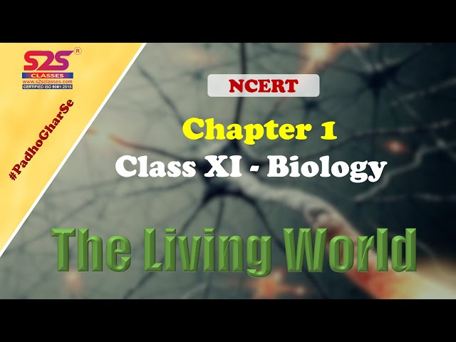 Class 11 Biology - Chapter 1 - The Living World | NEET | CBSE | NCERT | S2S Classes | Full Chapter